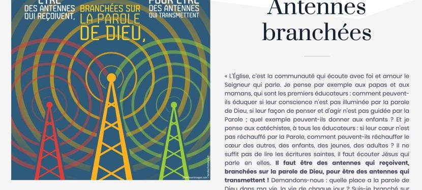 Antennes branchées